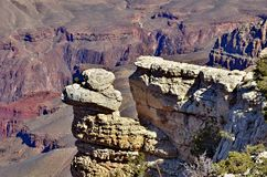 Grand Canyon Images stock