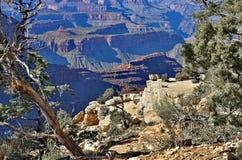 Grand Canyon Image stock