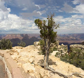 Grand Canyon Immagini Stock