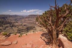 Grand Canyon Immagini Stock