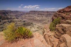 Grand Canyon Immagini Stock Libere da Diritti