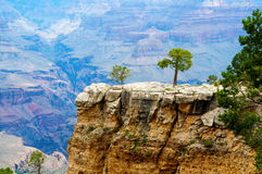 grand canyon Obraz Royalty Free