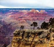 grand canyon Zdjęcia Stock