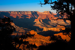 Free Grand Canyon Stock Photo - 9068230
