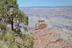 grand canyon Obrazy Royalty Free