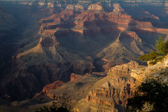 Grand Canyon afternon Royalty Free Stock Image