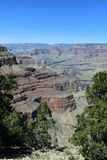 The grand canyon in the afternoon royalty free stock image