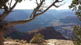 Grand Canyon. Area, and visited it on numerous occasions to hunt and enjoy the scenery. South Rim Stock Photos