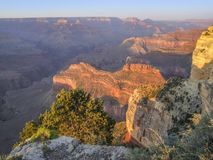 Grand Canyon in Arizona. Colorful evening scenery at the Grand Canyon National Park in Arizona, USA Stock Image