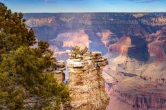 Grand Canyon Arizona del borde del sur con las nubes, los árboles y una sombra en el barranco fotografía de archivo