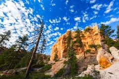 Grand Canyon, Arizona, paesaggio di prospettiva in autunno ad alba Fotografie Stock Libere da Diritti