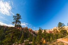 Grand Canyon, Arizona, paysage de perspective en automne au lever de soleil Photo libre de droits
