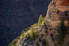 Grand Canyon, Arizona Stock Image