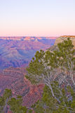Grand Canyon Arizona sunset Royalty Free Stock Image