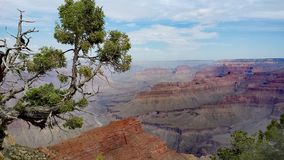 Grand Canyon Arizona Stock Photos
