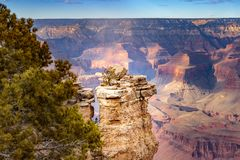 Grand Canyon Arizona van de Zuidenrand met wolken, bomen en een schaduw op de canion stock fotografie
