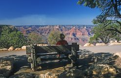 Grand Canyon, Besucher stockfoto