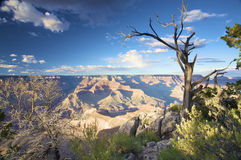 Grand canyon with clouds and a blue sky Stock Photo