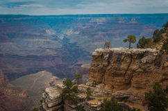 Grand Canyon. Colorado colorful nature amazing Royalty Free Stock Photo