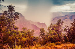 Grand Canyon. Colorado colorful nature amazing Stock Image