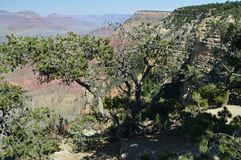 Grand Canyon Of The Colorado River. South Kaibab Trailhead. Geological formations. June 22, 2017. Grand Canyon, Arizona, USA. EEUU Royalty Free Stock Photography