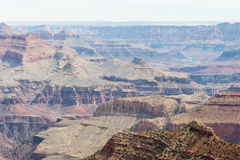 Grand Canyon and Colorado River Royalty Free Stock Image