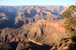 Grand Canyon Colours Royalty Free Stock Photos