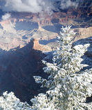 Grand Canyon Contrasts Royalty Free Stock Image