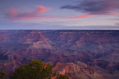 Grand Canyon Dawn Stock Photography