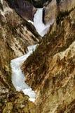 Grand Canyon de las cascadas de Yellowstone. Foto de archivo