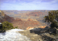 Grand Canyon -de Lente Stock Afbeeldingen