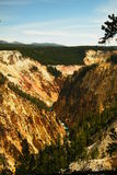 Grand Canyon de Yellowstonw Images stock