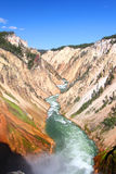 Grand Canyon del fiume Yellowstone Fotografie Stock