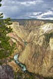 Grand Canyon des Yellowstone Stockbild