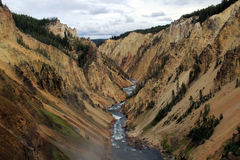 Grand Canyon des Yellowstone stockfotos