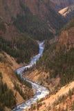 Grand Canyon des Yellowstone Lizenzfreies Stockfoto