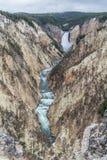 Grand Canyon des Yellowstone Lizenzfreie Stockbilder
