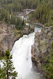 Grand Canyon des Yellowstone Rivers, Yellowstone Nationalpark stockfotografie