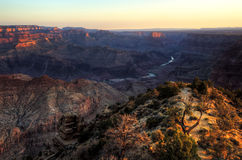 Grand Canyon, Desert View Point  Sunrise Royalty Free Stock Images