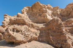 Grand Canyon di Charyn nel Kazakistan Fotografie Stock Libere da Diritti
