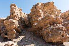 Grand Canyon di Charyn nel Kazakistan Fotografia Stock