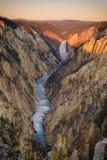 Grand Canyon do parque nacional Wyoming de Yellowstone Imagem de Stock