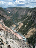 Grand Canyon du Yellowstone Photo stock