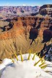Grand Canyon en hiver, Etats-Unis Images stock