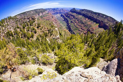 Grand Canyon Fisheye Stock Photos