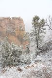 Fog in Grand Canyon. Grand Canyon foggy weather landscape in Arizona, United States. Mather point view with snow stock images