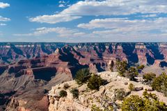 Grand Canyon, Grandview-Punt, randprojectie met bomen en bevindende steen; rode klippen van het noordenmuur op achtergrond Royalty-vrije Stock Foto's