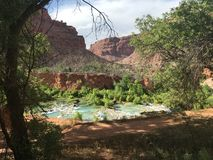 Grand Canyon Greenery. Grand Canyon views of water, greenery, rock Stock Photos