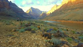 Grand canyon ground Stock Images