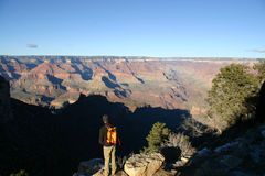 Grand Canyon Hiker. An unknown hiker viewing the Grand Canyon royalty free stock photos
